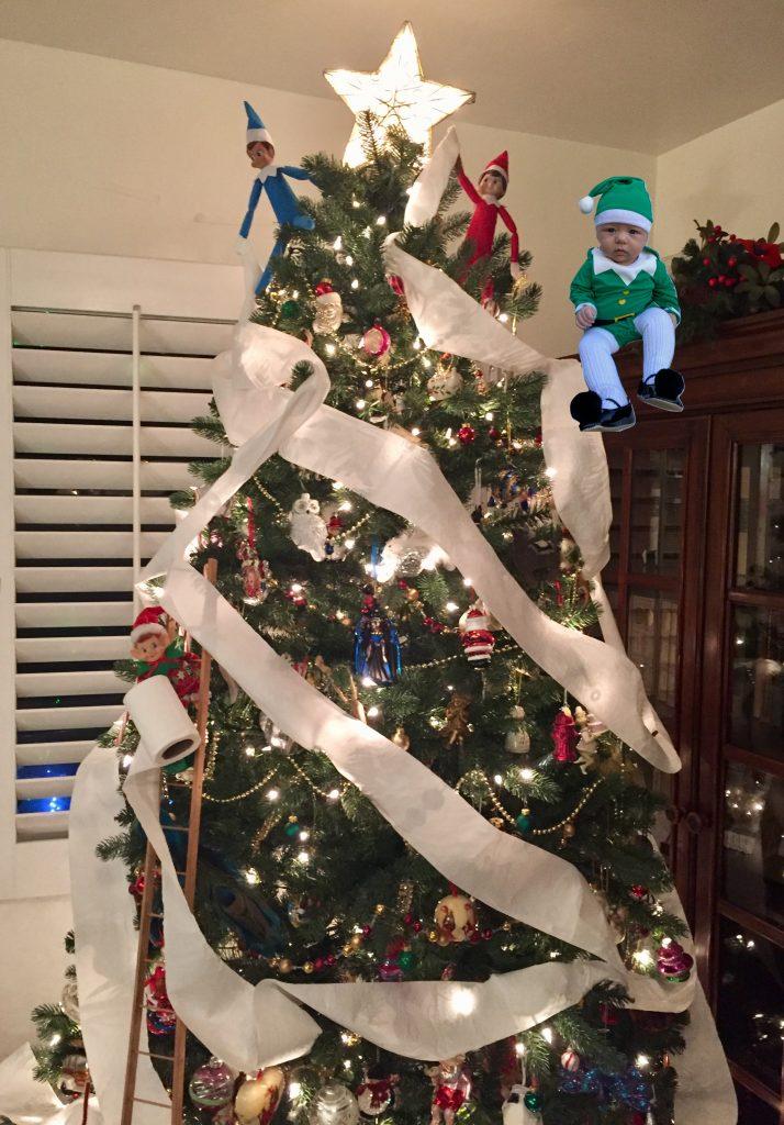 Elf on the Shelf toilet paper tree
